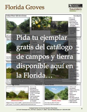 Catalogo Granjas en Venta Florida EEUU