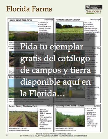 Catalogo Fincas en Venta Florida EEUU