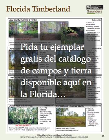 Catalogo Tierras Forestales en Venta Florida EEUU