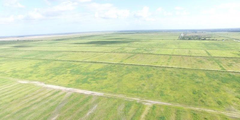 חווה גדולה למכירה באמריקה