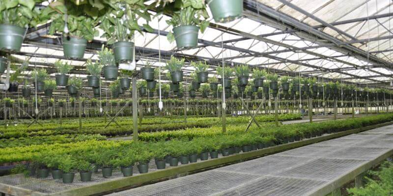 florida commercial grow house for sale