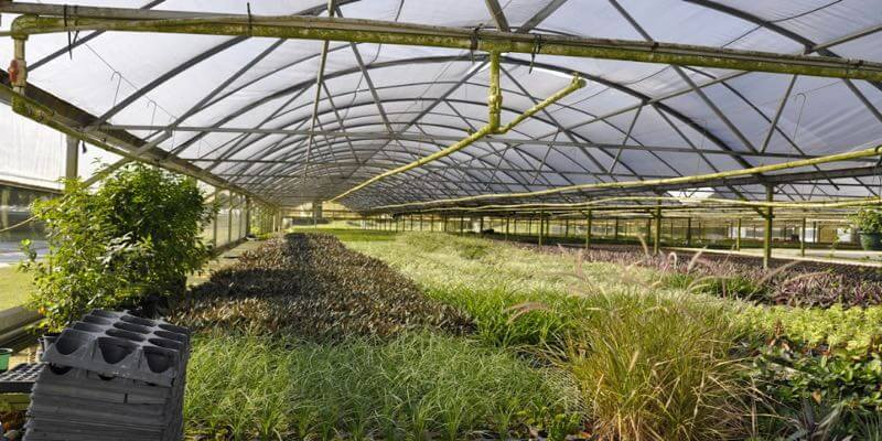 commercial greenhouse for sale in florida