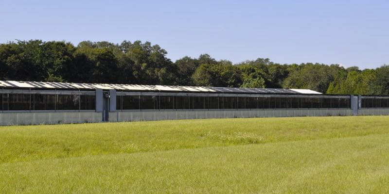 large plant nursery for sale in florida