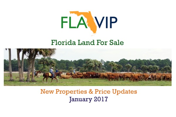 florida land for sale january 2017