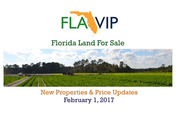 Florida Land For Sale February 2017