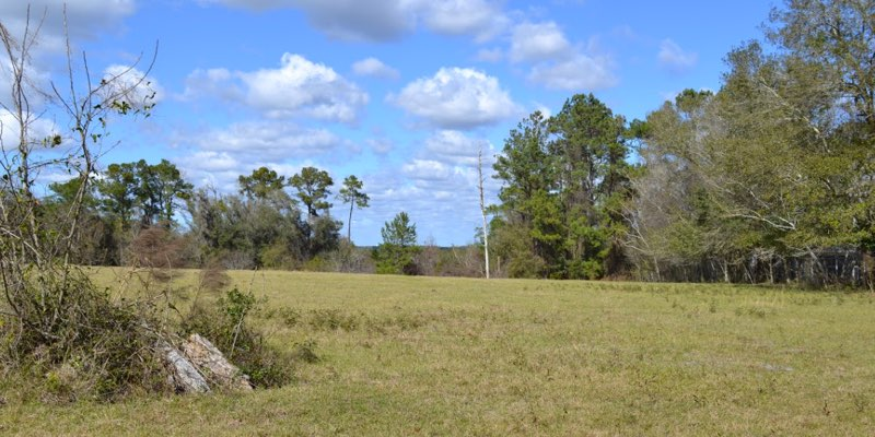 Ranch for Sale near Tampa