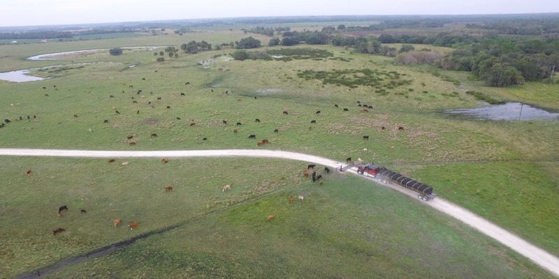 미국에서 판매되는 대형 농장