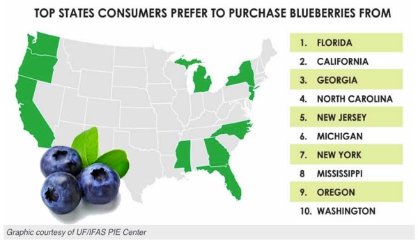 US Consumer Prefer Florida Blueberries