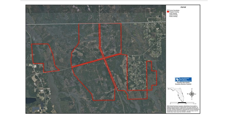 7086 Acre Florida Timberland For Sale