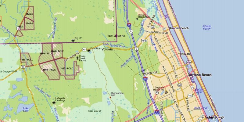 Waldfläche in Florida zu verkaufen