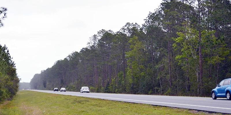 Terreno forestal en venta EEUU