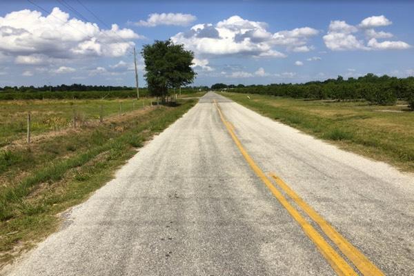 Florida Pasture Land For Sale