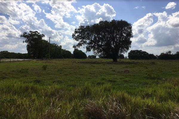 horse farm for sale near tampa
