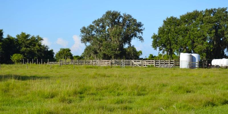 ranch kaufen usa