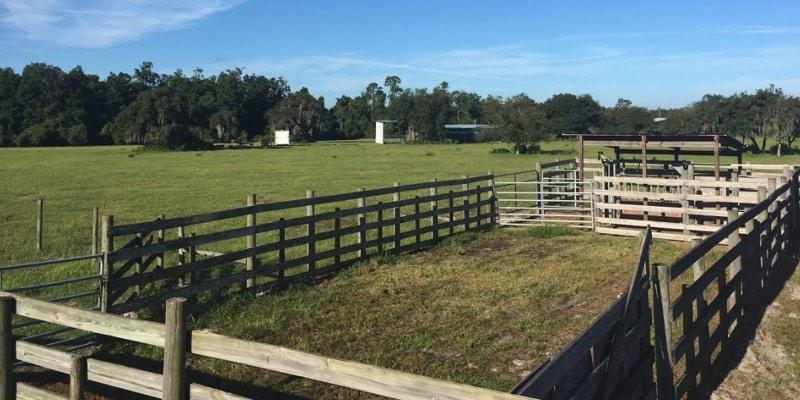 ranch à vendre en Amérique