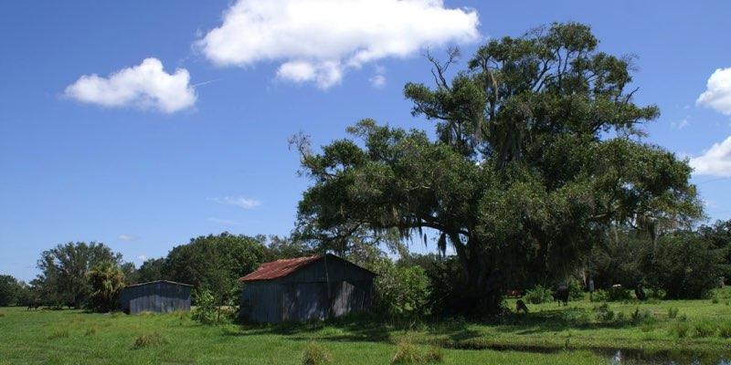 农场在美国出售在家