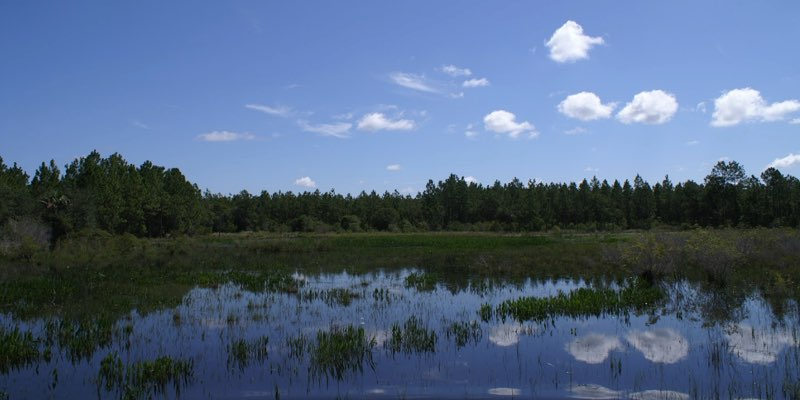 hunting ranch for sale near naples