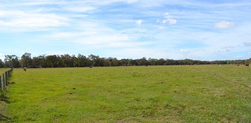rancho ganadero en venta en florida