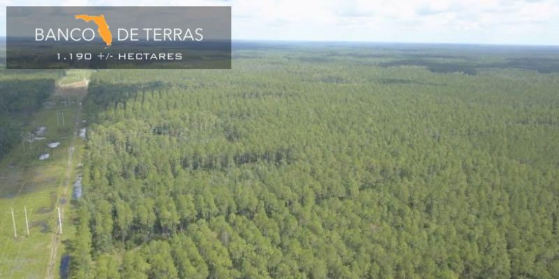 Banco de Terras à Venda Florida EUA