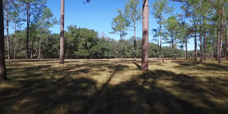 Gilchrist County Land for Development