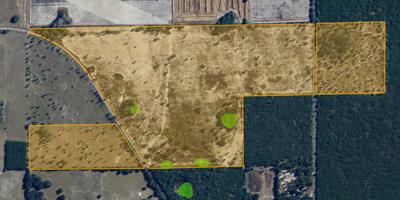 Florida cavalo fazenda para venda