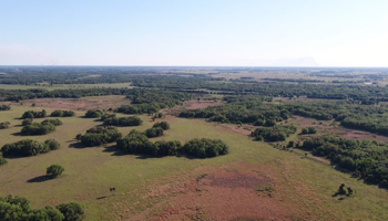 25000 Acre Cattle Ranch For Sale Florida