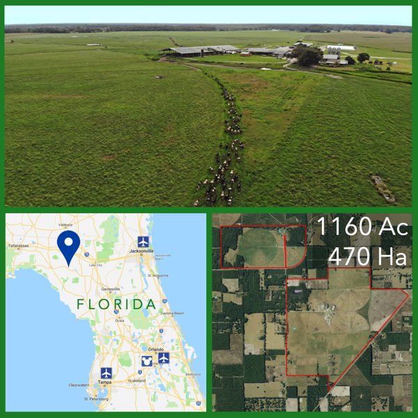 florida dairy farm for sale