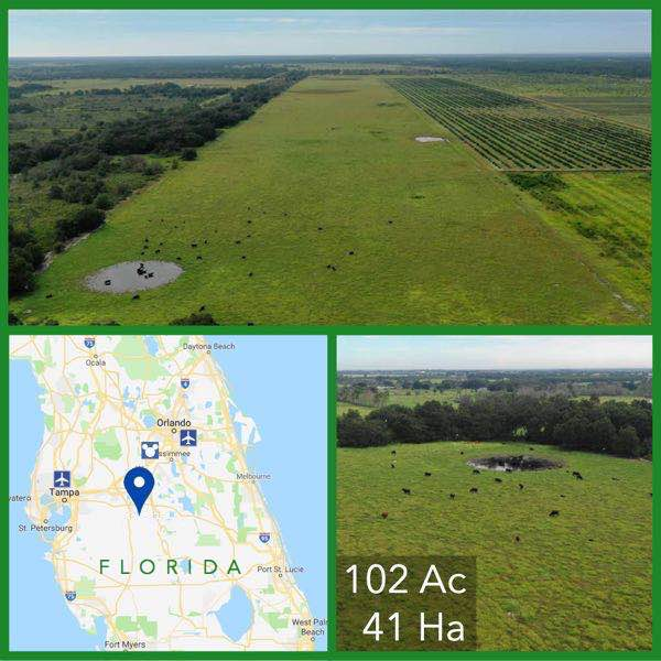 102 Acre Florida Pasture Land For Sale