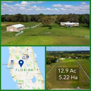 12.9 Acre Florida Equestrian Acreage For Sale