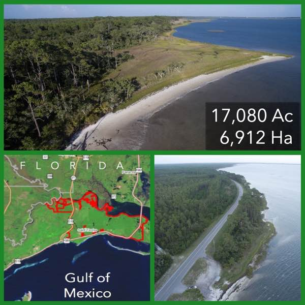 Large Florida Waterfront Development Land For Sale