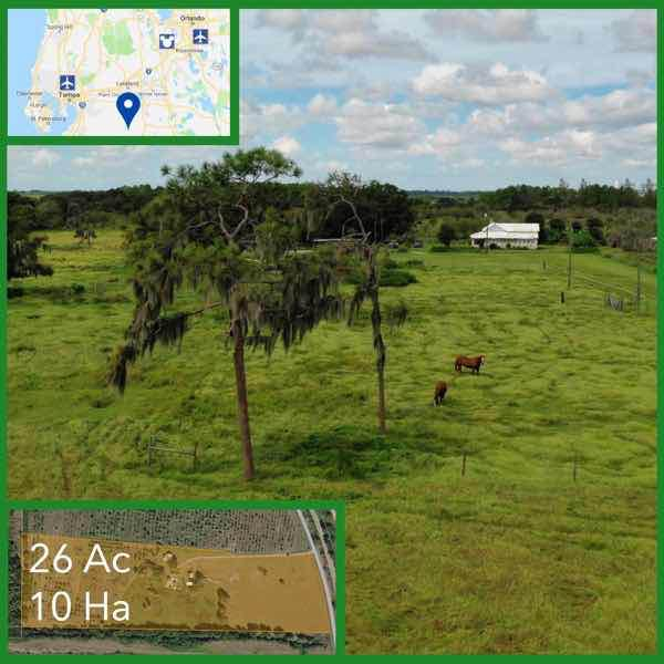 26 Acre Florida Equestrian Land For Sale