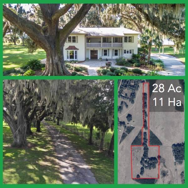 28 Acre Florida Horse Farm and Home For Sale