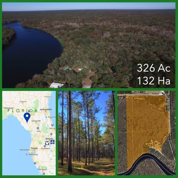 326 Acre Florida Suwannee Riverfront Land For Sale
