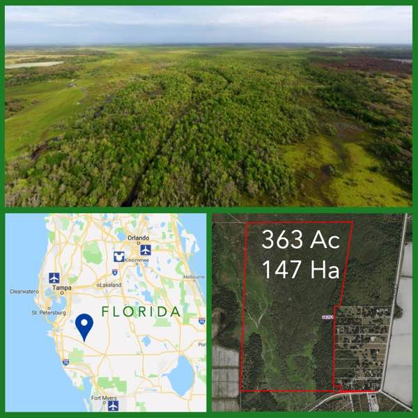 363 Acre Florida Riverfront Retreat For Sale