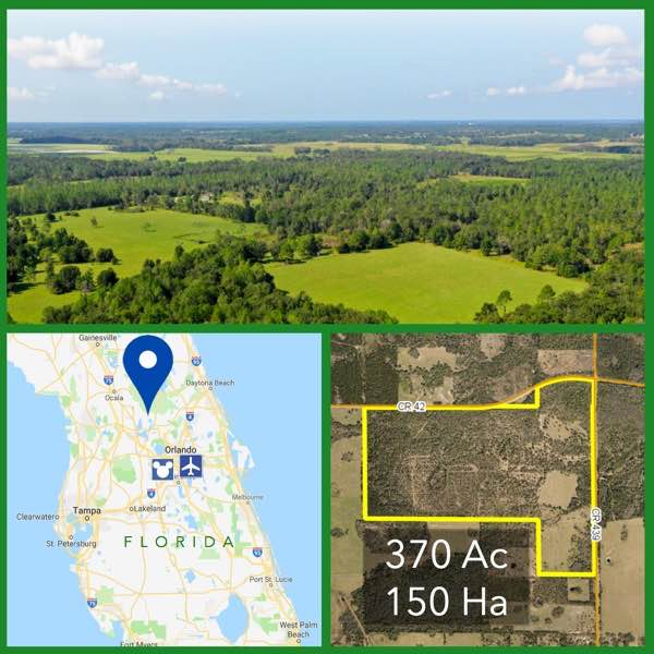 370 Acre Florida Recreation Land For Sale