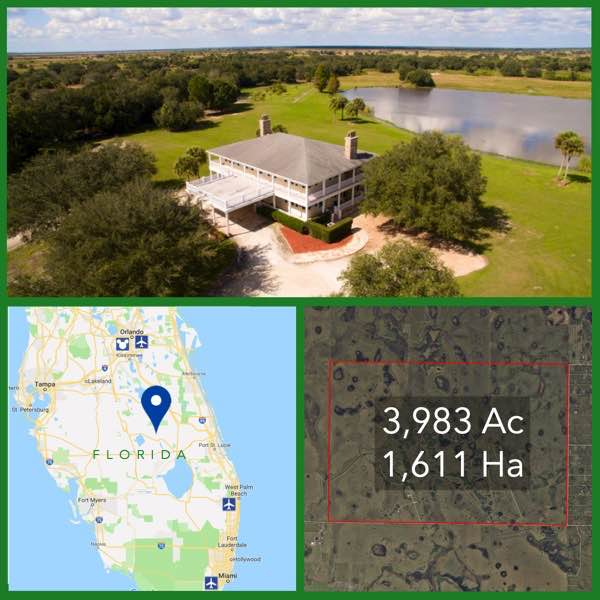 3983 Acre Florida Cattle Ranch For Sale