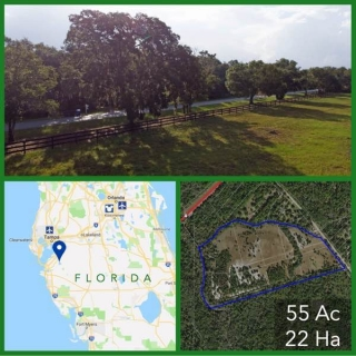 55 Acre Florida Development Land For Sale