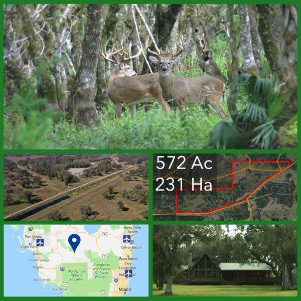 572 Acre Florida Luxury Hunting Retreat For Sale