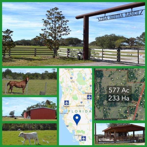 577 Acre Florida Cattle Ranch For Sale