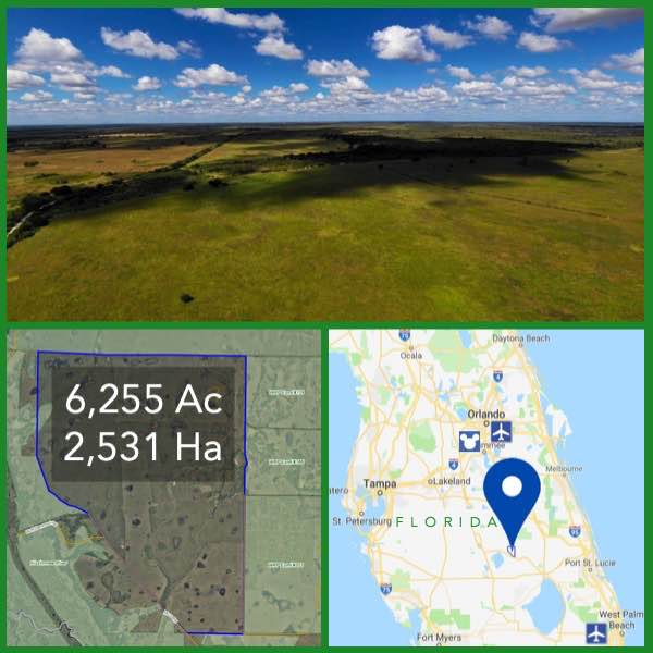 6255 Acre Florida Cattle Ranch For Sale