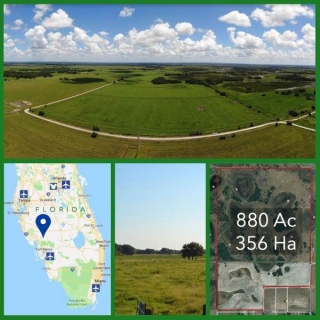 880 Acre Florida Cattle Ranch For Sale
