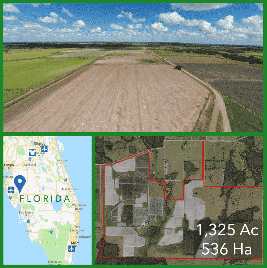 1325 Acre Florida Farmland For Sale