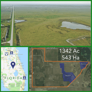 1342 Acre Florida Farm For Sale