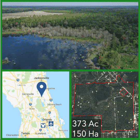373 Acre Florida Hunting Land For Sale