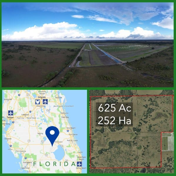 625 Acre Florida Cattle Ranch For Sale