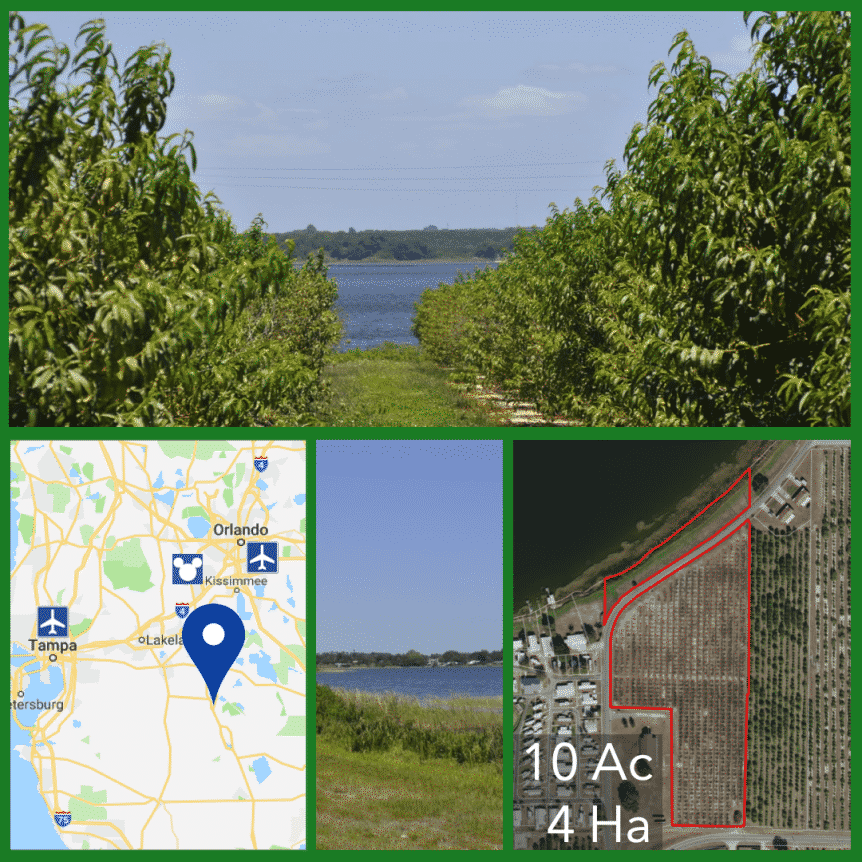 10 Acre Florida Development Land For Sale