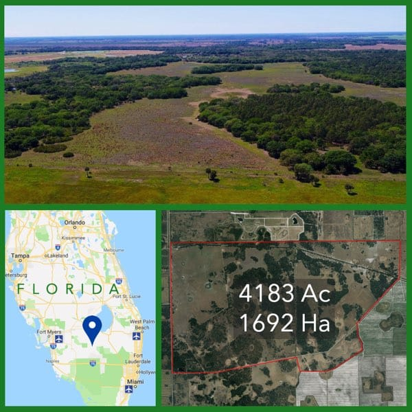 4183 Acre Florida Cattle Ranch For Sale