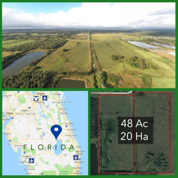 48 Acre Florida Cattle Pasture For Sale