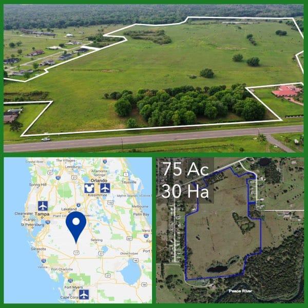 75 Acre Florida Development Land For Sale