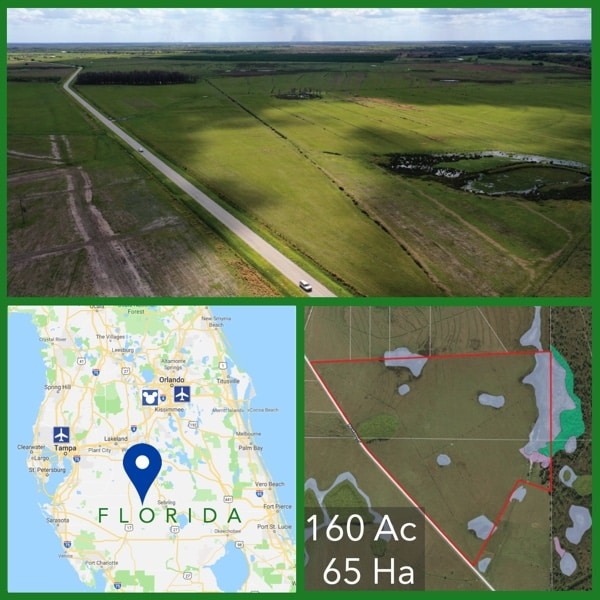 160 Acre Florida Cattle Pasture For Sale